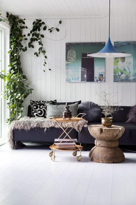 enliven your monochromatic space with a statement climbing plant in the corner like here