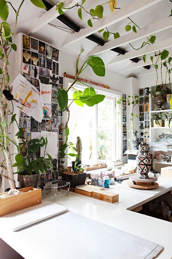 a climbing plant over the wooden ceiling beams in the workspace to refresh the look