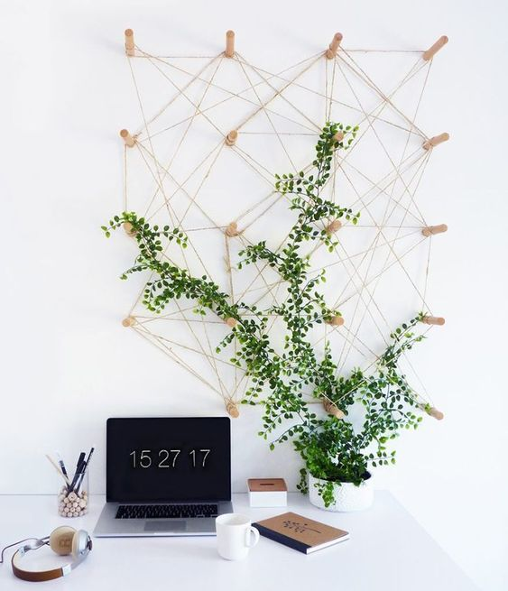 a small home office refreshed with a climbing plant that goes up the wall on hooks on it