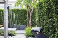 a simple and modern backyard with greenery walls, a long metal bench, concrete pavements and cacti