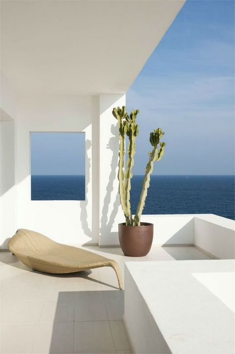 a small minimal terrace with a wicker leaf shaped lounger, a statement cactus and a gorgeous sea view
