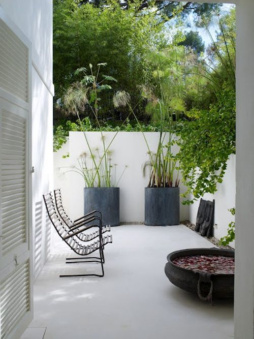a small minimalist patio with black metal chairs, concrete planters with statement plants and a metal bowl with floating blooms