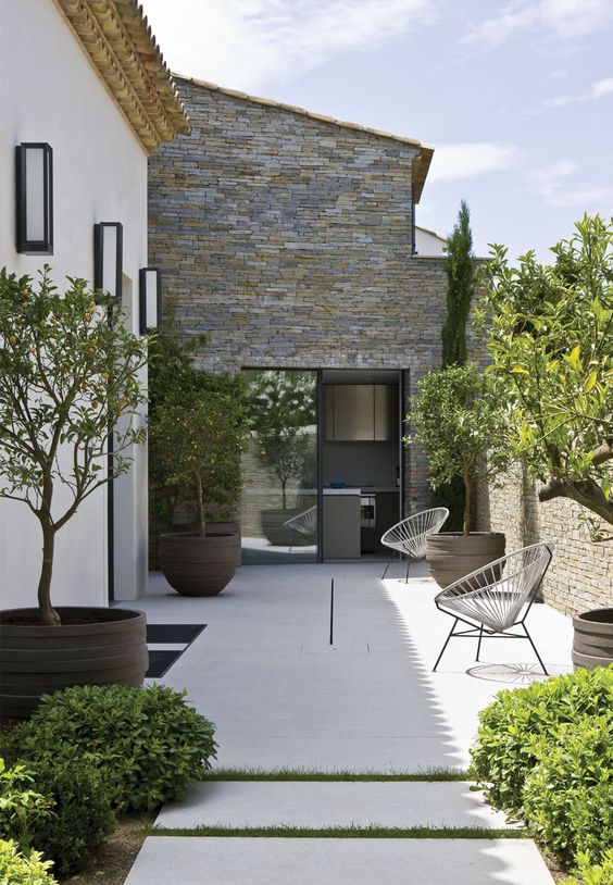 an ultra minimalist patio with a couple of chairs, statement planters and fruit trees and greenery