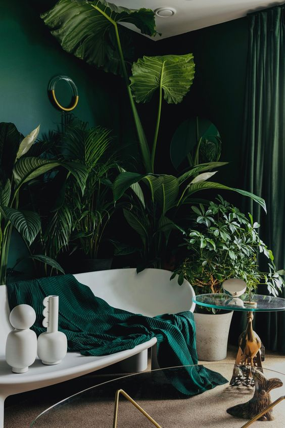a refined living room with hunter green walls, lots of potted plants, a white bench with a green blanket and green curtains