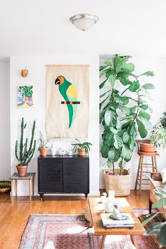 a boho tropical living room with white walls, mid-century modern furniture, a boho rug, potted plants and bright decor