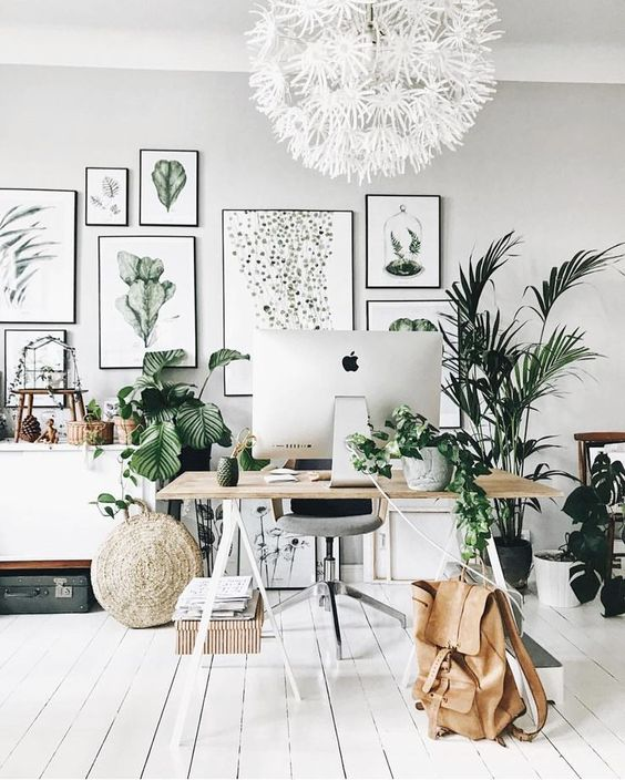 a neutral tropical home office with a large gallery wall, potted plants, neutral furniture and a white flower chandelier