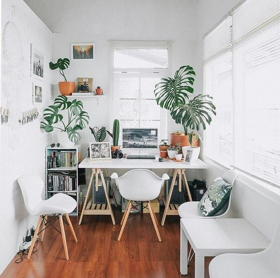 a pure white small home office with a trestle desk, white furniture, potted plants and a gallery wall is very welcoming