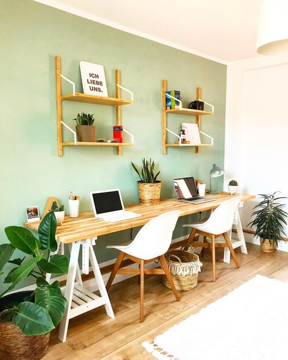 a stylish home office with a pastel green accent wall, a double trestle desk, white chairs and potted plants