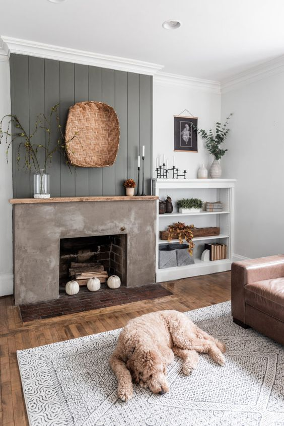 a modern farmhouse living room with a grey beadboard wall and a concrete fireplace with firewood and pumpkins