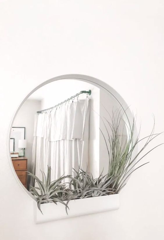 an IKEA Ypperlig mirror turned into a stylish wall piece with an air plant space is a very modern and bold solution