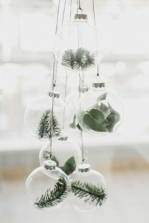 sheer glass Christmas ornaments filled with fresh foliage and greenery can be used for Christmas tree decor or just hung somewhere
