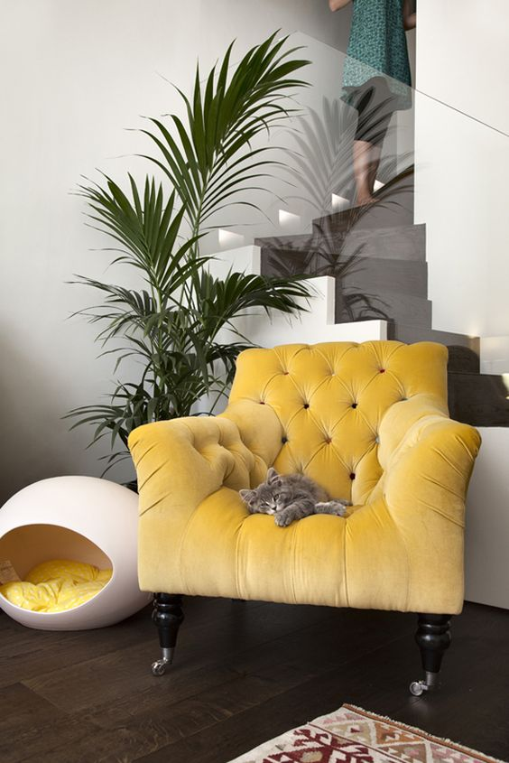a neutral nook with a vintage yellow overstuffed chair and an egg cat house with a yellow blanket inside