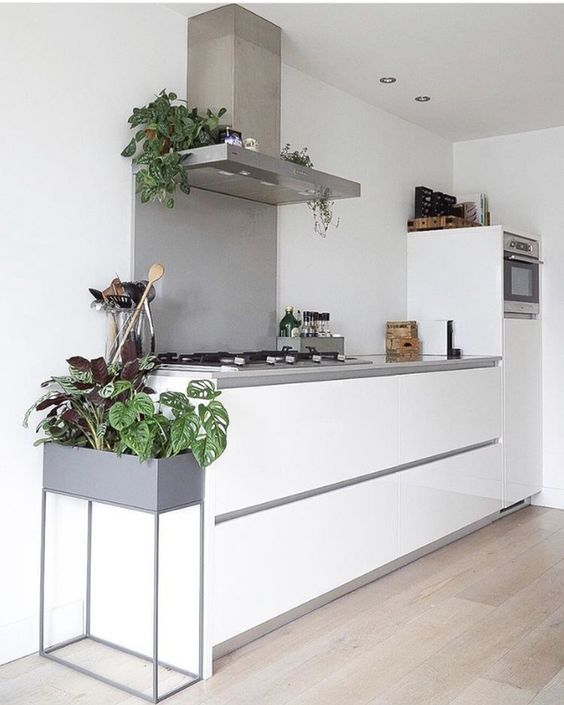 a minimal Nordic kitchen with sleek white cabinetry, a concrete countertop and backsplash, potted plants to refresh the space