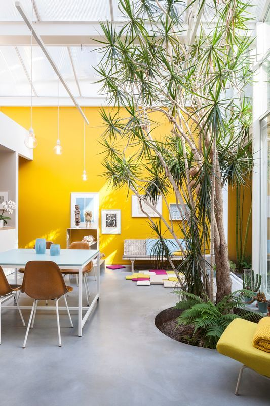 a unique and shiny open lyaout with living trees, a living and a dining space, a yellow accent wall and some other yellow accents
