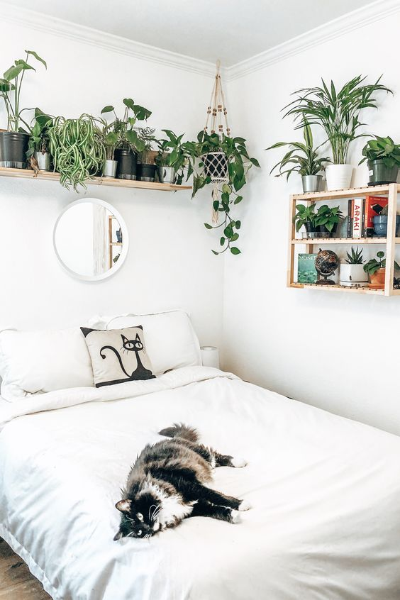 a cool neutral bedroom with lots of greenery