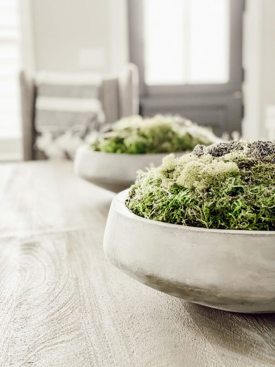 a concrete planter with moss is an ultra modern spring centerpiece to make, and it works for many seasons