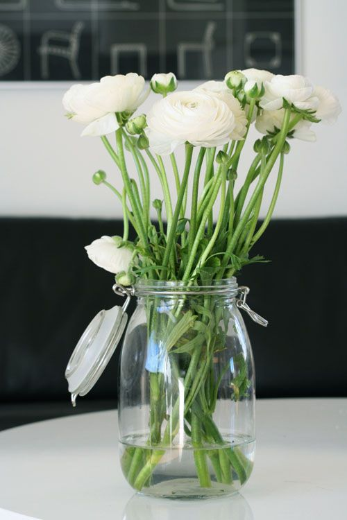 a jar with white blooms is always a good idea for spring, summer or any other seasons