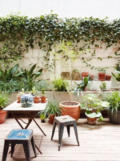 a relaxed eclectic terrace with shabby furniture and lots of potted greenery and vines of various kinds