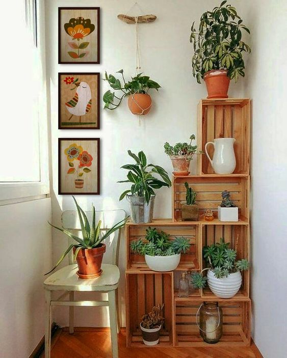 a stained crate open shelving unit in the balcony acting as a plant stand - with potted plants and succulents is a cool idea