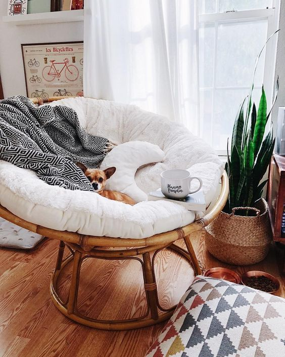 a welcoming boho nook with a rattan papasan chair with pillows, a potted plant, a boho pillow is very inviting