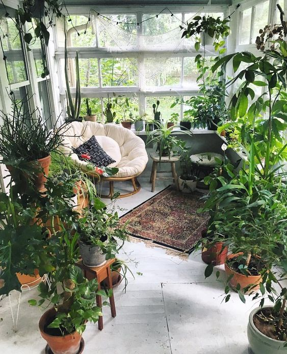 an amazing indoor garden with lots of plants and succulents, a boho rug, a papasan chair with pillows and an ottoman