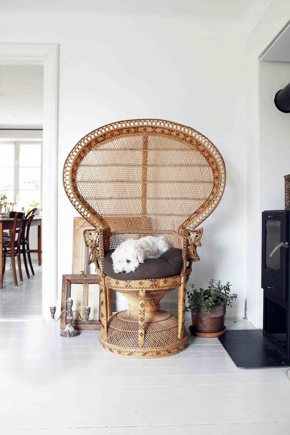 a lovely peacock chair with a brown cushion is a very creative and cozy piece for a boho space