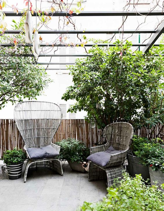 an outdoor space with rattan chairs - a usual one and a very modern peacock piece plus potted greenery and trees