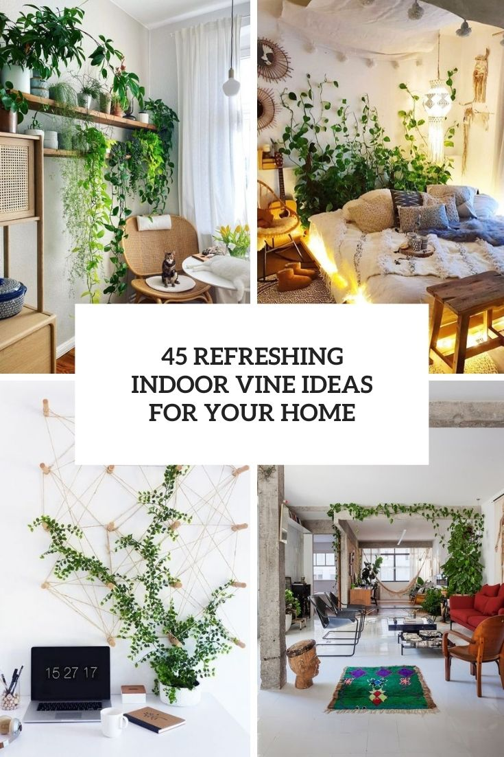 45 Refreshing Indoor Vine Ideas For Your Home