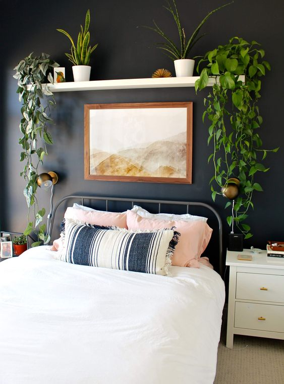 a boho bedroom with a black accent wall, a metal bed and an open shelf with climbing plants