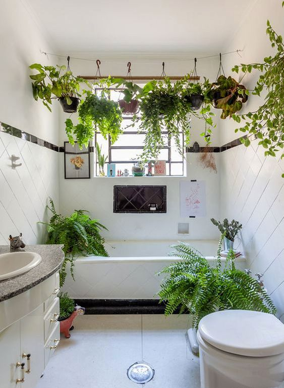 a boho white bathroom in black and white, with climbing plants over the tub and ferns around feels relaxed