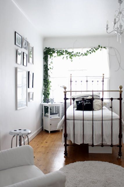 a climbing plant over the bed is a very fresh and cool idea to rock and it will refresh your space at once