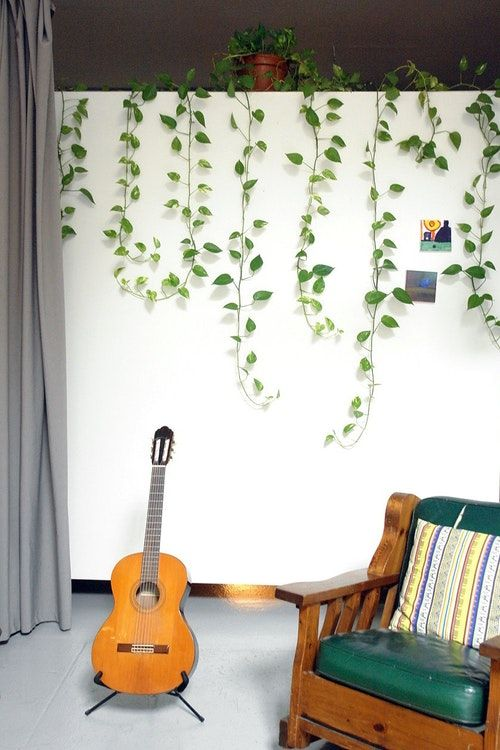 a cozy modern space with a green chair and some indoor vines covering the wall to make it look lively