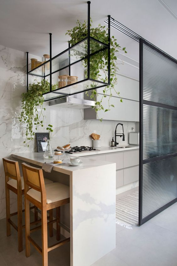a glass open shelf hanging over the bar counter features climbing plants that enliven this small kitchen