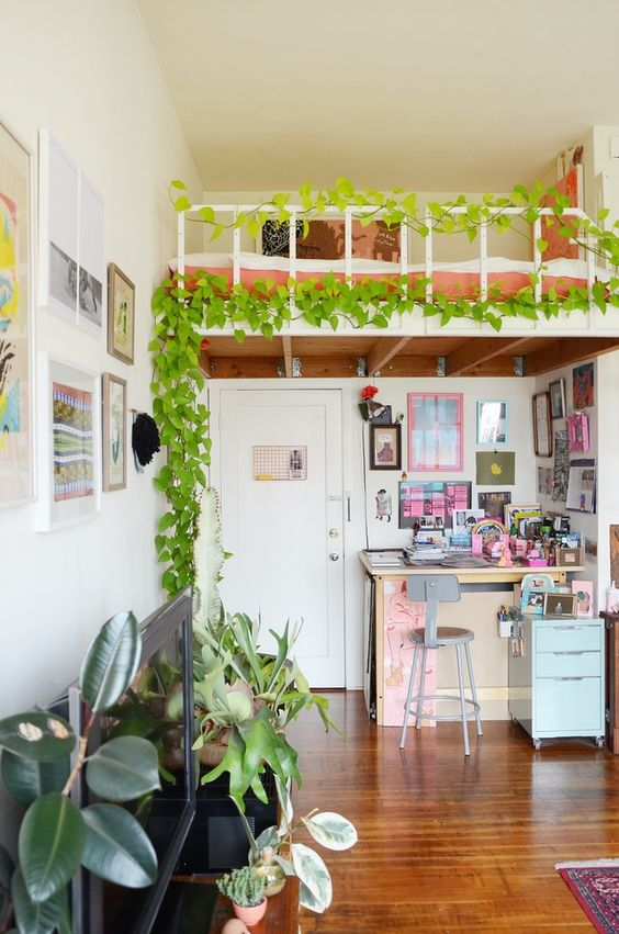 a loft bedroom accented with an indoor vine is a lovely idea to separate this space even more