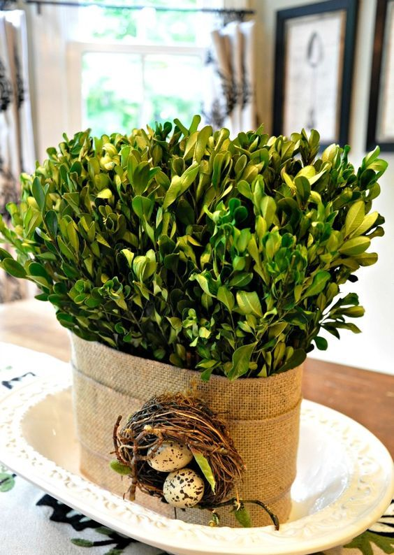 a planter wrapped with burlap and with greenery, a nest with eggs is a cool decoration for spring and Easter