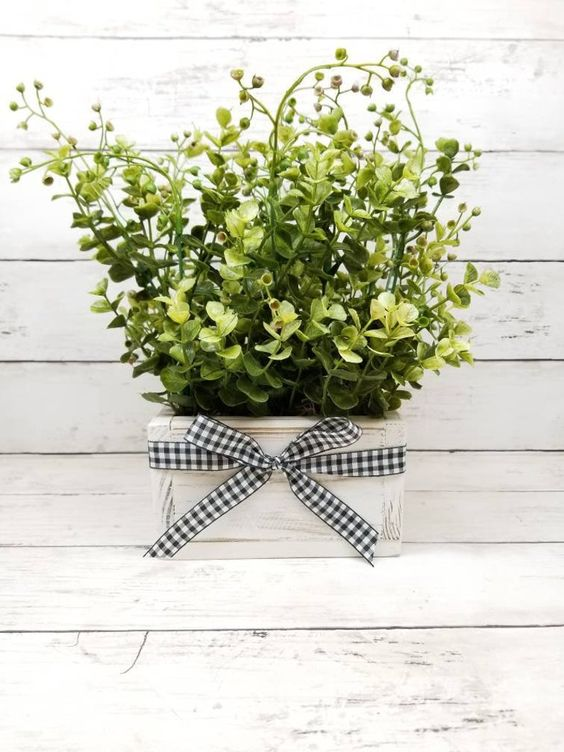 a pretty and easy spring decoration or centerpiece of greenery in a white planter with a plaid bow is a very cool idea
