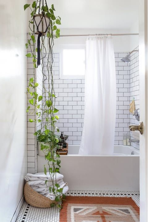 a white modern bathroom with subway tiles and penny ones on the floor, with a climbing plant is very chic