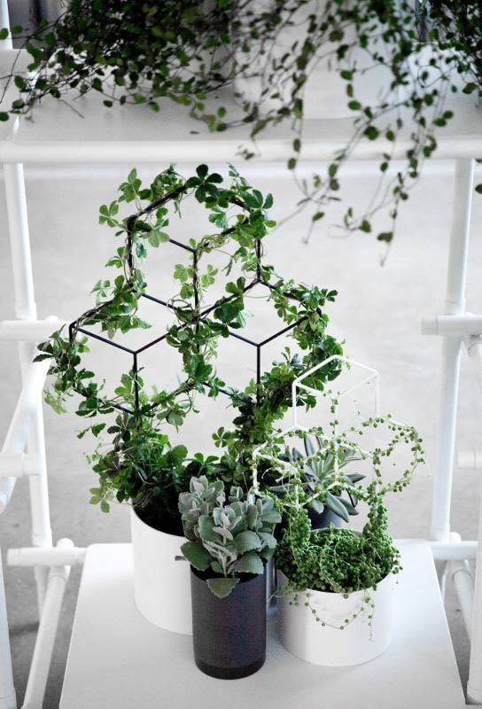 creative planters with trellis that allow to show off the climbing plants at their best