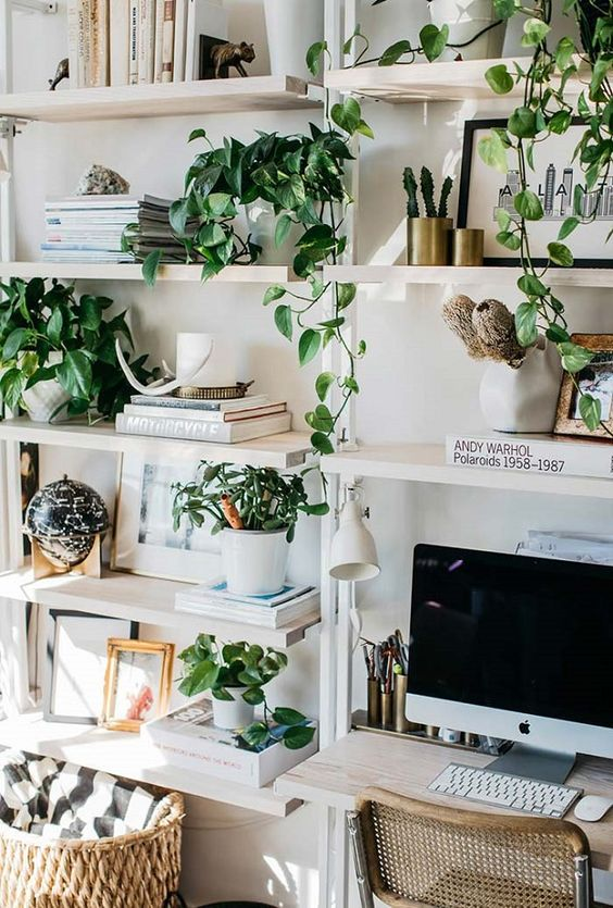 enliven your workspace with potted greenery and climbing plants easily - they will make the space welcoming