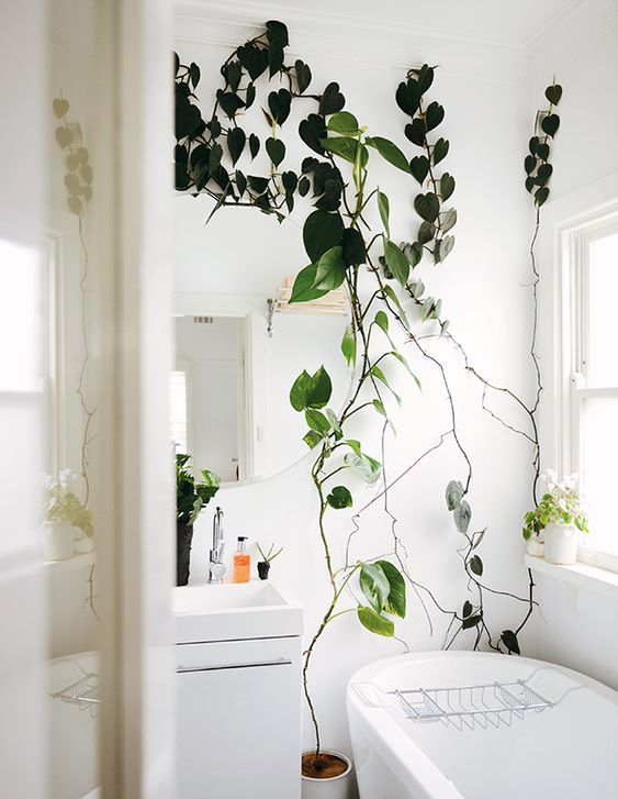 potted greenery going up the bathroom walls makes the space look lively, fresh and spring-ready