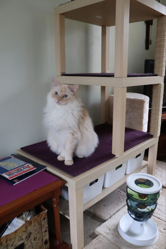 a beautiful cat condo made of IKEA Lack side tables, a matching coffee table and Variera kitchen organizer boxes