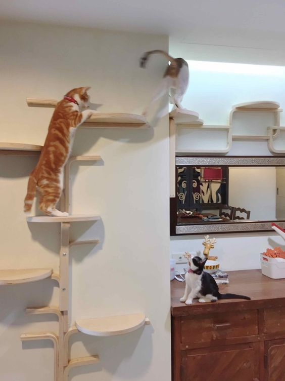 an IKEA Frosta stool cat tree is really a fresh and clever solution that looks modern and out of the box
