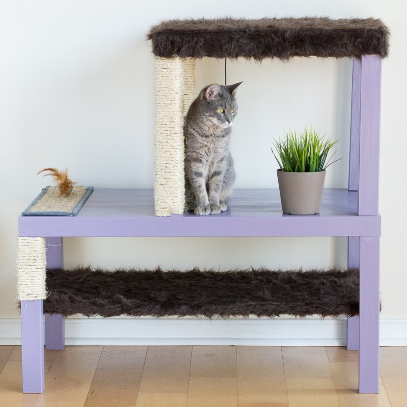 a lilac cat condo using IKEA Lack tables includes some cat scratchers and a pot of fresh wheat grass for vitamins