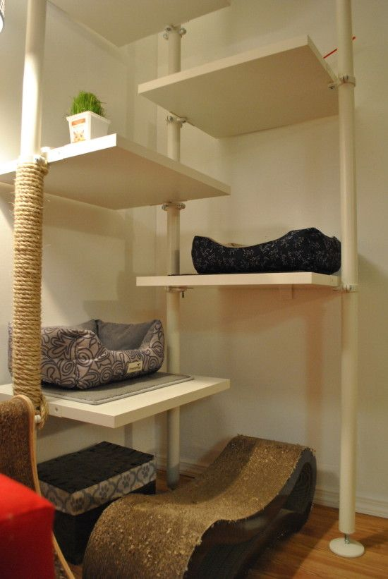 a stylish modern cat tree built of IKEA Stolmen poles and shelves is a cool idea, especially if you have more than 1 cat