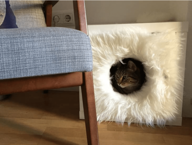 an IKEA Kallax cube turned into a cat hideaway with some faux fur inside and outside - that piece can double as a side table
