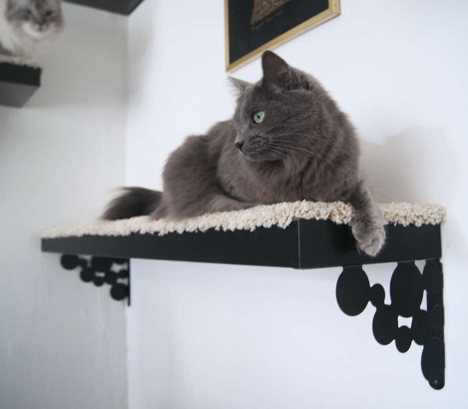an IKEA Lack shelf turned into a stylish vintage-inspired cat bed attached to the wall - an instant kitty pleaser