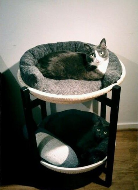 an IKEA tray table turned into a double-decker cat bed is a lovely and compact idea to give your pets personal furniture and space