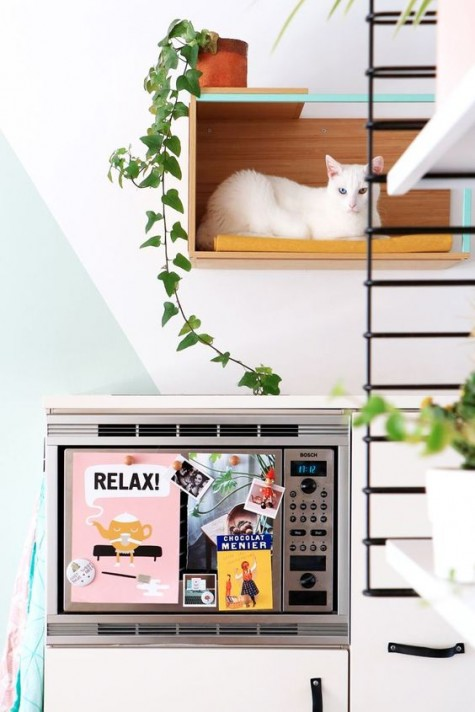 a colorful cat hangout made of an IKEA cabinet is a stylish modern piece of cat furniture that can be attached anywhere