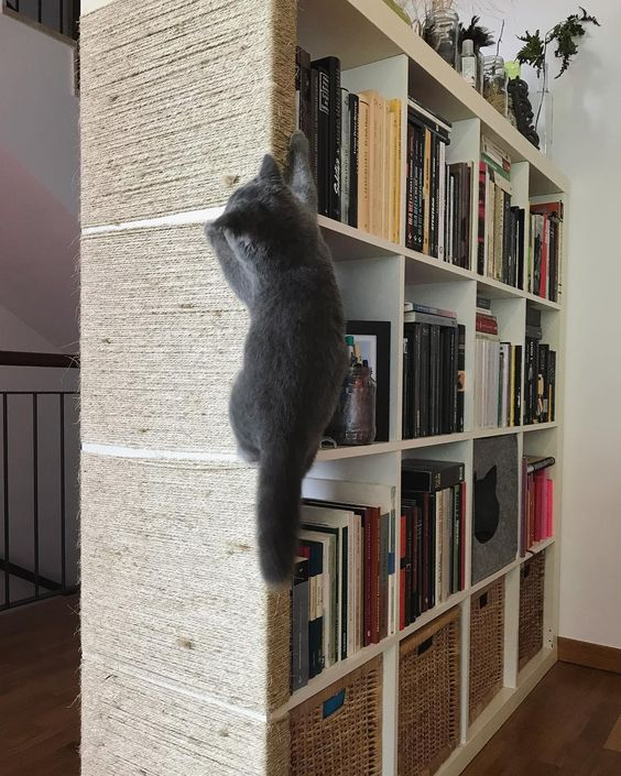 an IKEA Kallax shelf with a cat scratcher taking one side is a great idea to combine storage and cat fun at the same time