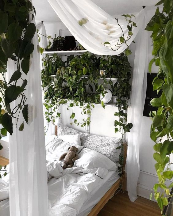 a welcoming and fresh boho bedroom done in white, with a canopy bed styled with greenery and white curtains, climbing plants around and white bedding